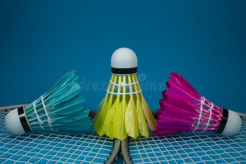 Opierzeni shuttlecocks i badminton kanty zdjęcie stock