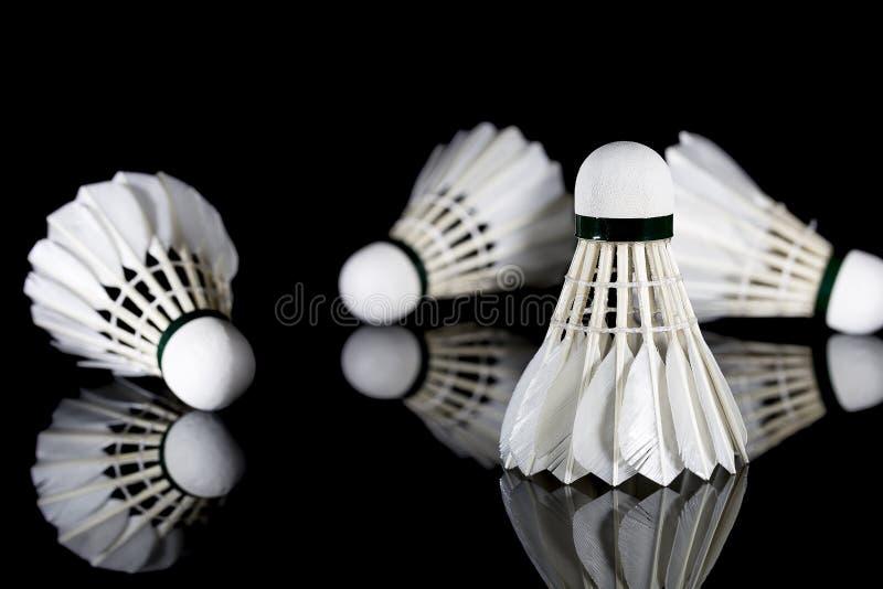 Opierzony Biały Shuttlecocks na czerni zdjęcia royalty free