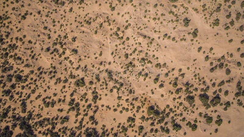Opinião aérea do zangão de dunas de areia e de arbustos verdes em Corfu Grécia fotos de stock