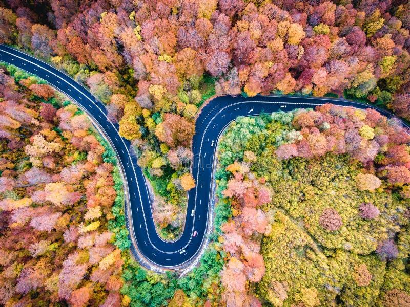 Opinião aérea do zangão de uma estrada de enrolamento curvada através da floresta olá! fotografia de stock