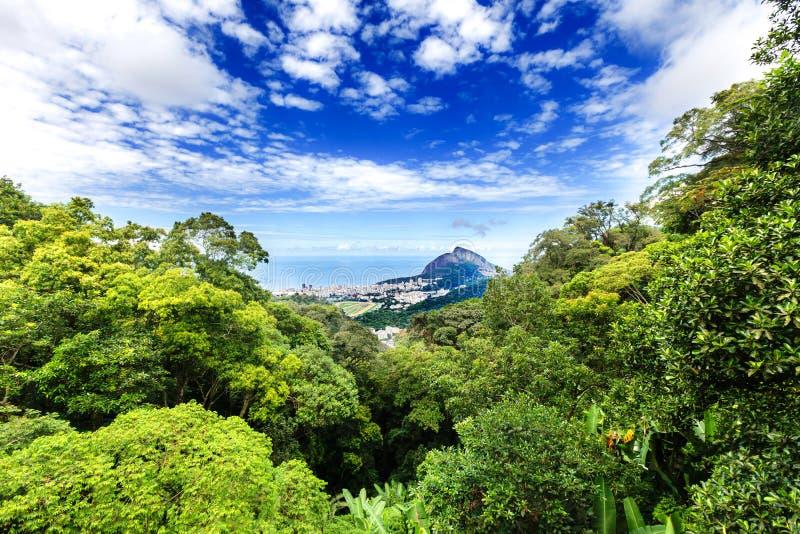 Opinião aérea Rio de janeiro através de uma floresta luxúria fotos de stock royalty free