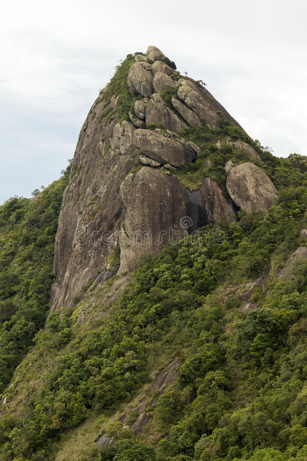 Opinião ascendente próxima do vertical de uma cara da rocha da montanha com algumas árvores sob nebuloso branco - o serra do pico fotos de stock
