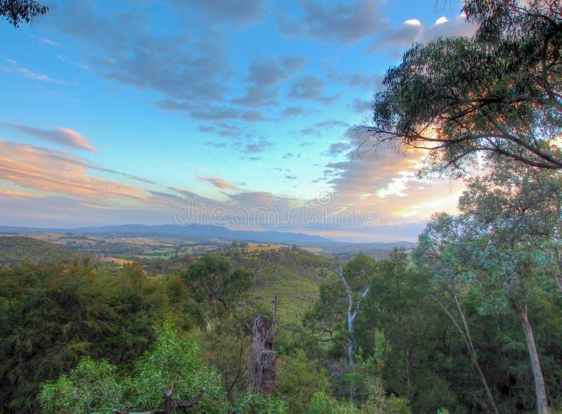 Opinião australiana do arbusto fotografia de stock
