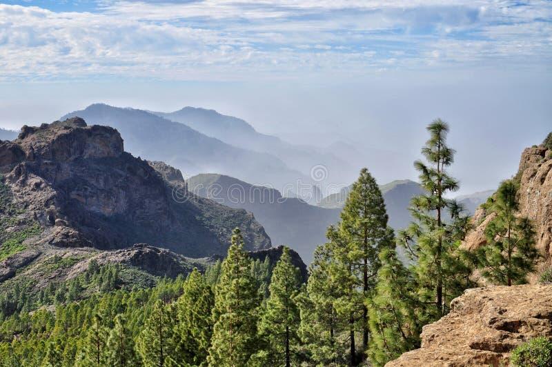 Opinião bonita da montanha e da floresta em Ilhas Canárias de canaria do gran em spain fotos de stock