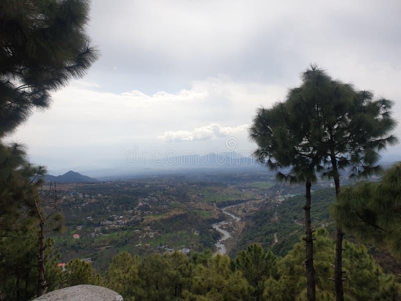 Opinião bonita da natureza de Palampur, amante de natureza, Himachal Pradesh, Índia imagens de stock