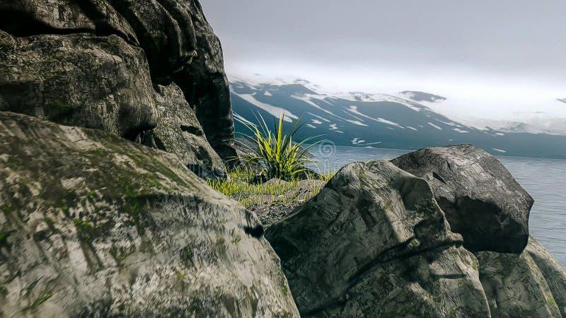 Opinião brilhante da costa do verão em antártico foto de stock