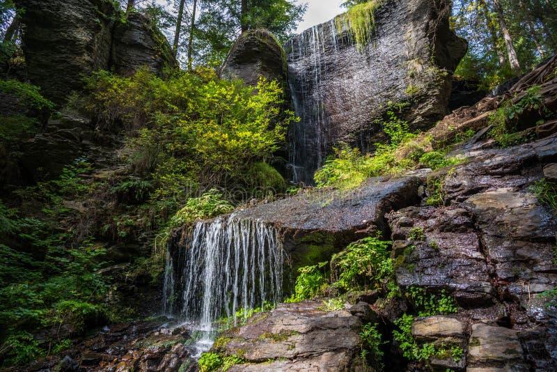 Opinião cênico da cachoeira pequena bonita, original, claro na Transilvânia, Romênia, montanhas Carpathian fotografia de stock royalty free
