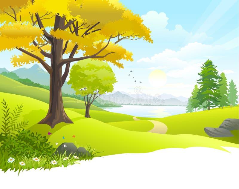Opinião cênico do lago do campo ilustração royalty free