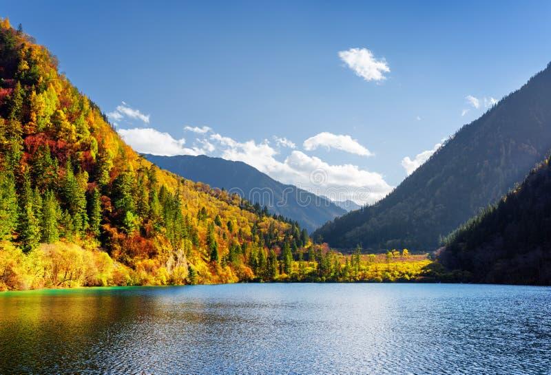 Opinião cênico Panda Lake entre madeiras coloridas da queda imagens de stock