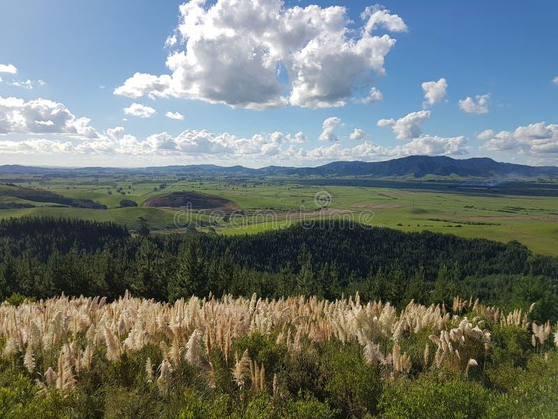Opinião calma da paisagem em Nova Zelândia foto de stock