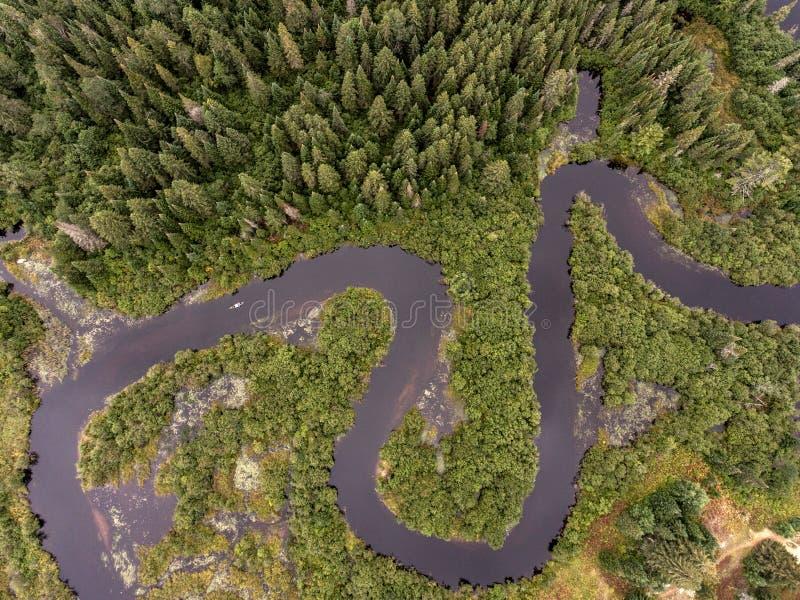 A opinião canoeing kayaking de olho de pássaros do rio do barco da canoa do caiaque aearial selvagem da opinião de Forest Canada  fotografia de stock royalty free