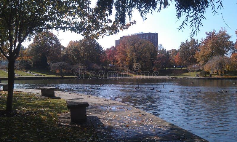 Opinião da beira do lago de outubro foto de stock