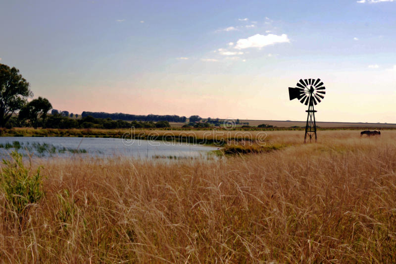 Opinião da exploração agrícola com céus azuis fotografia de stock royalty free