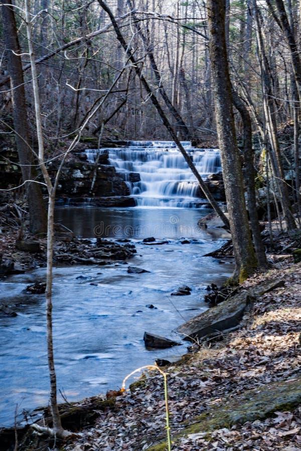 A opinião da floresta Fenwick mina a cachoeira imagem de stock
