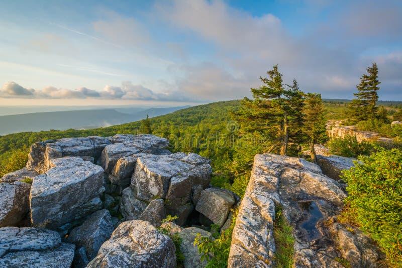 Opinião da manhã da conserva das rochas do urso em Dolly Sods Wilderness, floresta nacional de Monongahela, West Virginia foto de stock royalty free