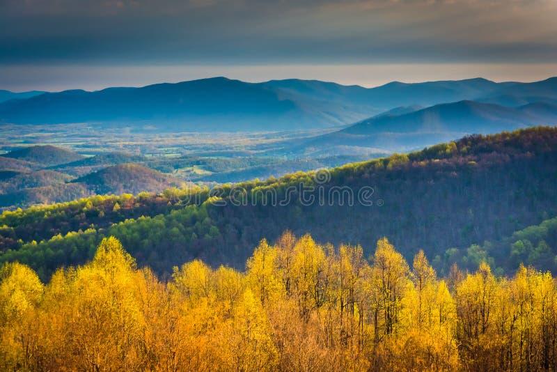 Opinião da manhã da movimentação da skyline no parque nacional de Shenandoah, Vir imagens de stock