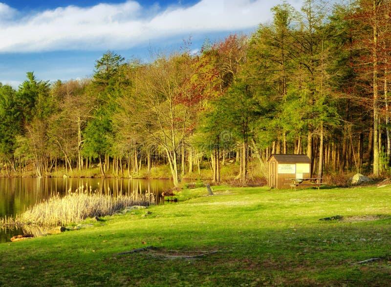 Opinião da mola do parque estadual de Burr Pond fotografia de stock