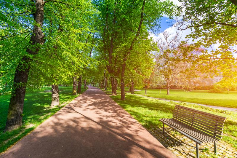 Opinião da mola no parque de Letna, Praga, República Checa Mola em Praga (Praha), parque bonito de Letna (Letenske sady) na luz s foto de stock