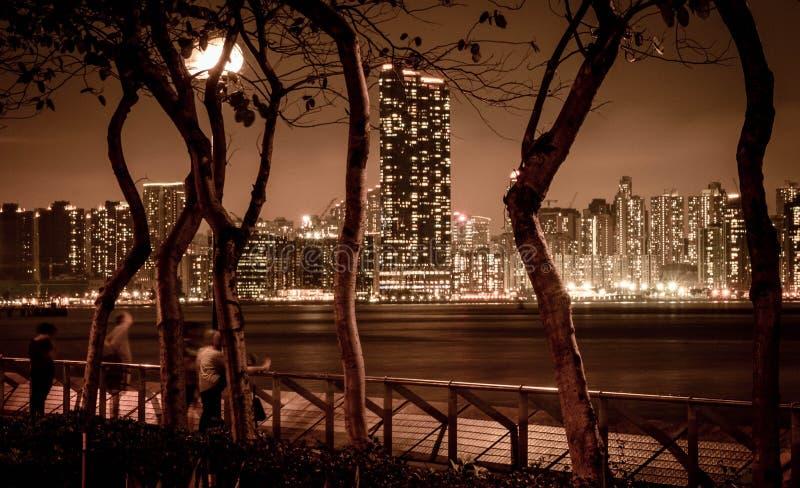 Opinião da noite da skyline de Hong Kong fotos de stock royalty free