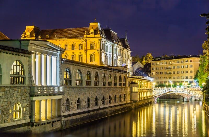 Opinião da noite de Ljubljana, Eslovênia imagens de stock royalty free