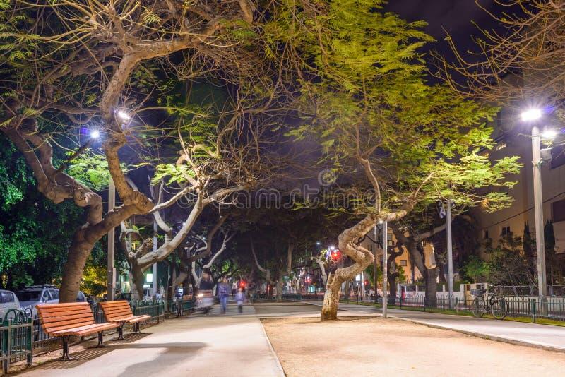 Opinião da noite do bulevar Rothschild em Tel Aviv, Israel foto de stock royalty free
