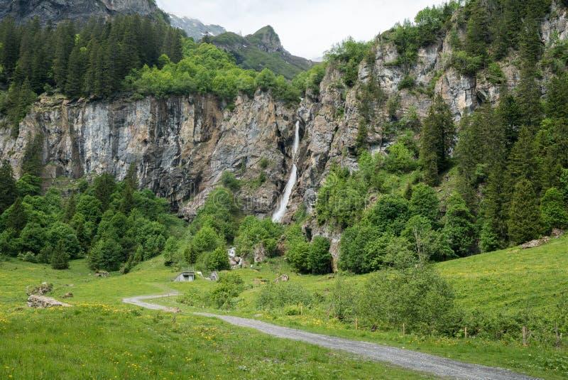 Opinião da paisagem de uma cachoeira pitoresca alta na paisagem verde luxúria da floresta e da montanha imagens de stock