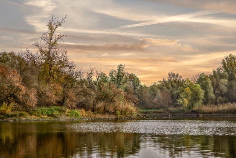 Opinião da paisagem do rio e das árvores no fundo foto de stock