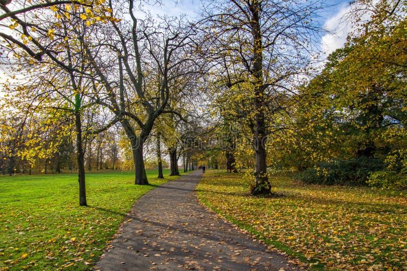 Opinião da paisagem do trajeto pedestre em Hyde Park foto de stock