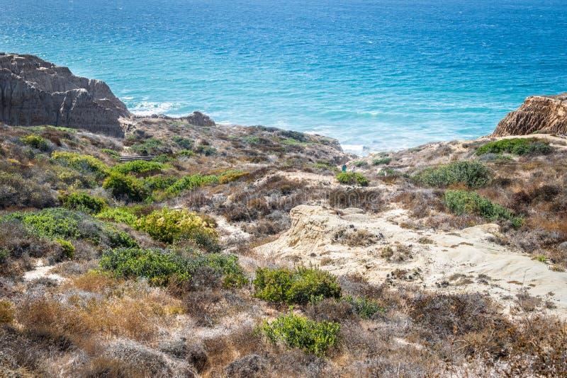 Opinião da paisagem e da praia em Torrey Pines State Reserve e na praia foto de stock royalty free