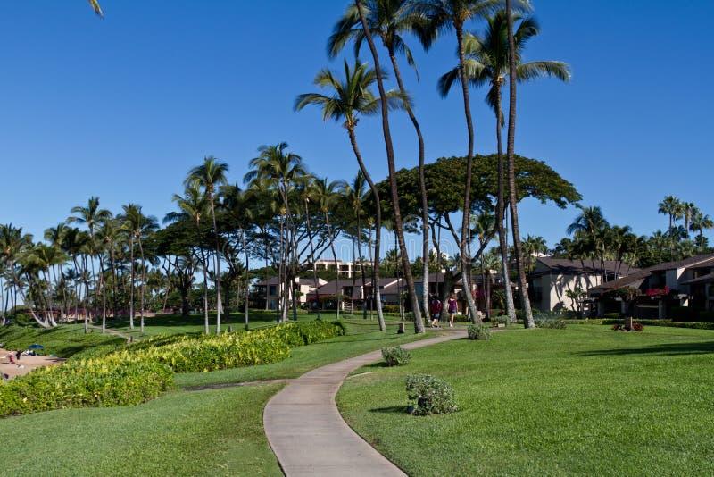 Opinião da praia de Maui fotos de stock