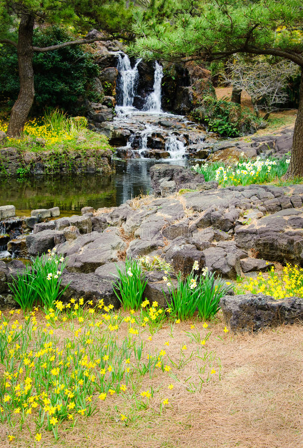 Opinião da primavera no parque de Hallim da ilha de Jeju fotografia de stock royalty free