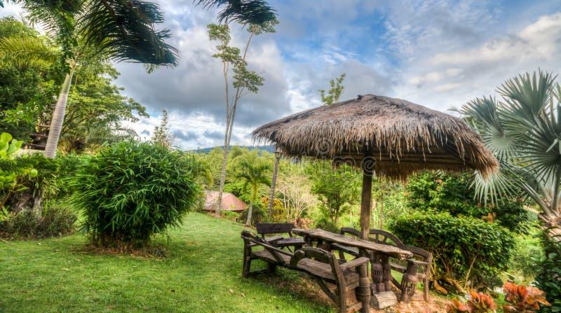 Opinião da selva, Khao Yai, Tailândia foto de stock royalty free