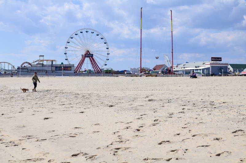 Opinião de ângulo larga da praia, com uma mulher que anda um cão Parque de Jolly Roger Amusement dentro fotografia de stock royalty free