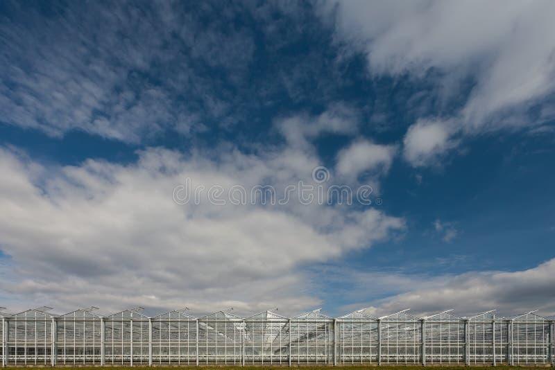 Opinião de ângulo larga de uma estufa industrial fotografia de stock