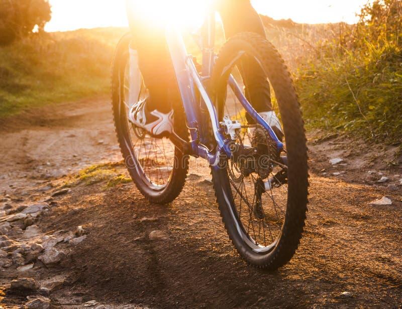 Opinião de baixo ângulo da fuga do Mountain bike da equitação do ciclista no nascer do sol fotografia de stock