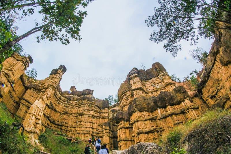 Opinião de baixo ângulo de ruínas de Brown perto das árvores verdes da folha foto de stock