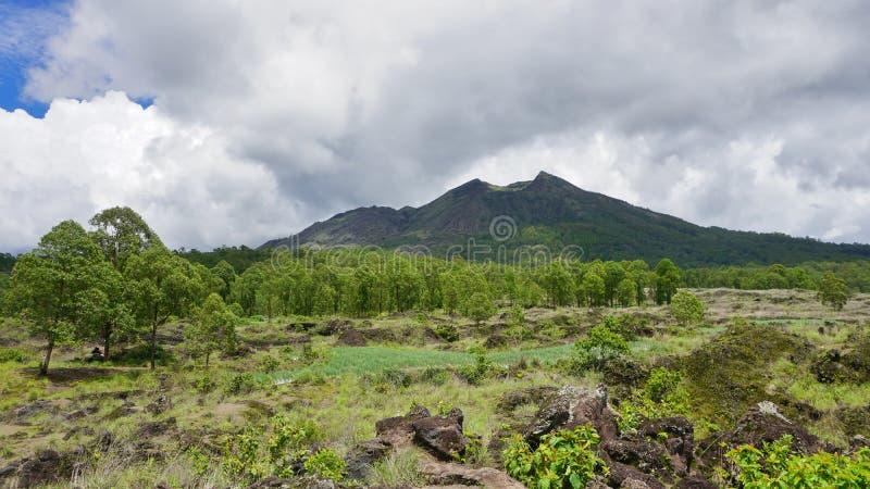 Opinião de Batur da montagem, Kintamani, Bali, Indonésia Cenário verde da montagem Batur imagem de stock
