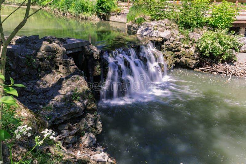 Opinião de convite natural da paisagem no jardim botânico com uma queda pequena da água fotografia de stock