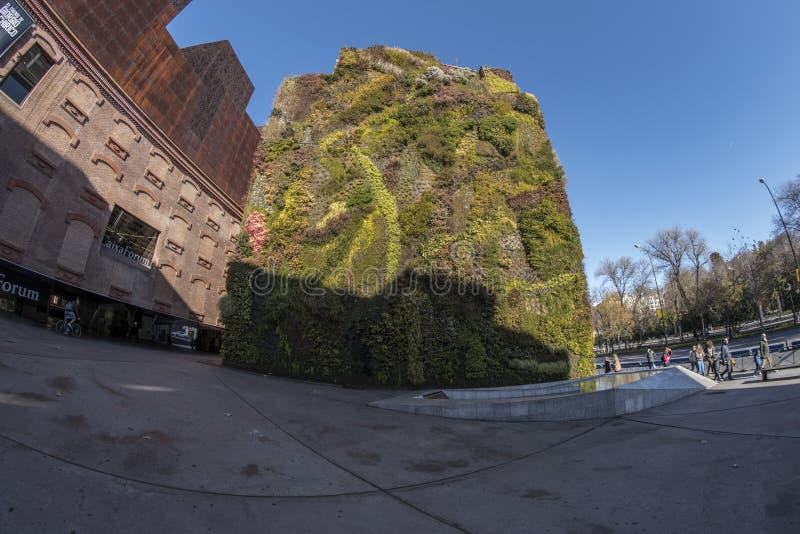 Opinião de Fisheye 180 de um jardim vertical na cidade do Madri fotos de stock