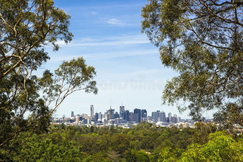Opinião de jardim botânico de Brisbane fotografia de stock