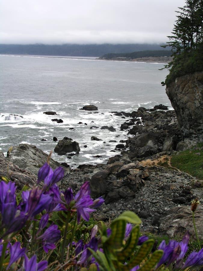 opinião de oceano fotografia de stock royalty free
