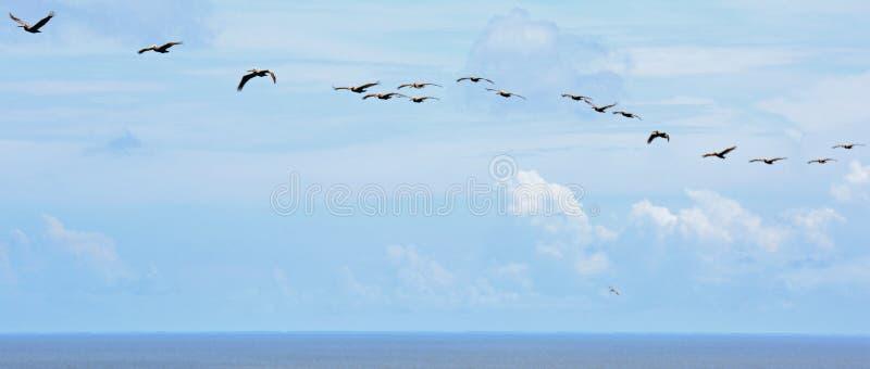 Opinião de olho de pássaro da parte superior de caçar o farol da ilha fotografia de stock royalty free
