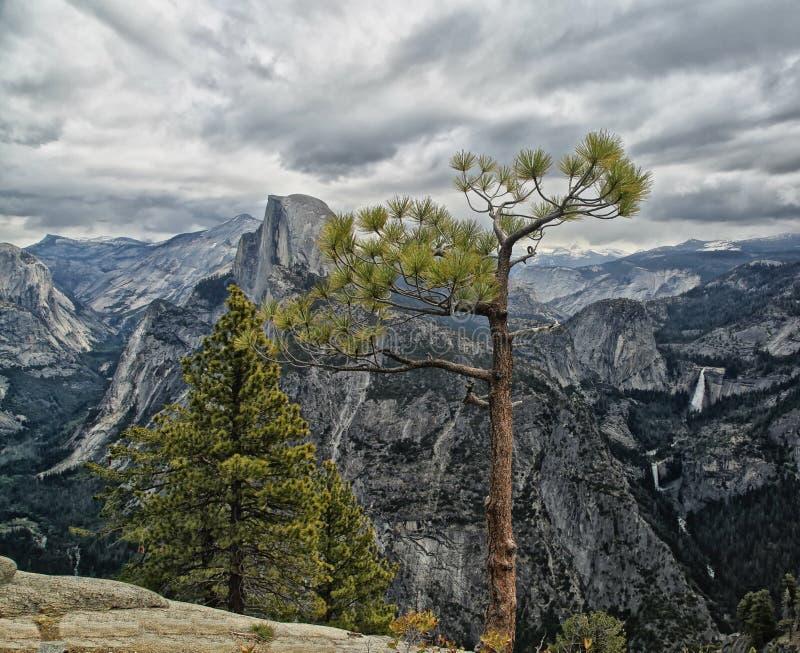 Opinião de parque nacional de Yosemite do ponto da geleira fotos de stock