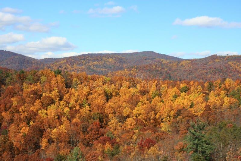 Opinião de pedra da queda do parque estadual da montanha foto de stock royalty free
