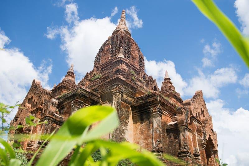 Opinião de perspectiva da rã do pagode no campo bagan em myanmar fotografia de stock