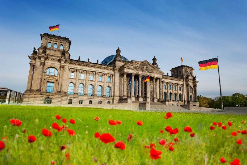 Opinião de Reichstag com tulipas vermelhas e as bandeiras alemãs foto de stock