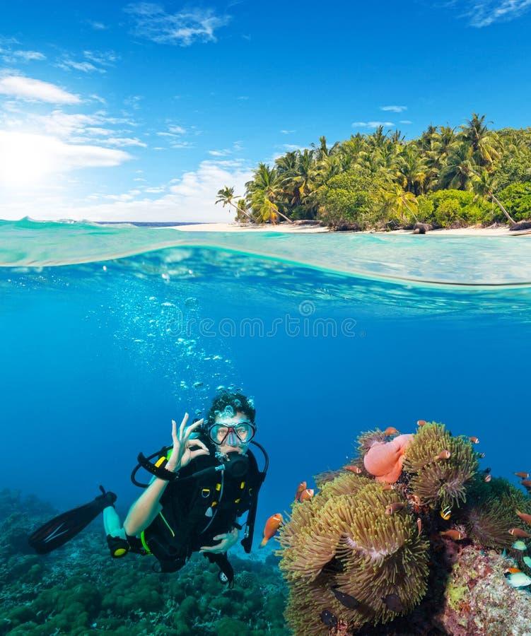Opinião de superfície inferior e à superfície da àgua o mergulhador da mulher imagem de stock royalty free
