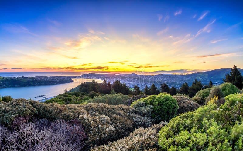 Opinião de surpresa do nascer do sol de uma parte superior do monte em Dunedin, Nova Zelândia foto de stock