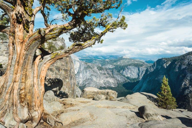 Opinião de Yosemite Falls superior, opinião de parque nacional de Yosemite, de montanhas e de vale do panorama, Califórnia, EUA imagem de stock