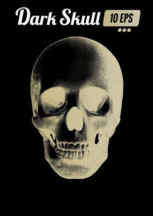 Opinião dianteira do crânio do ouro da gravura na BG escura ilustração do vetor